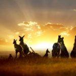 Imágenes De Paisajes Hermosos De Australia Paisajes Muy Bellos