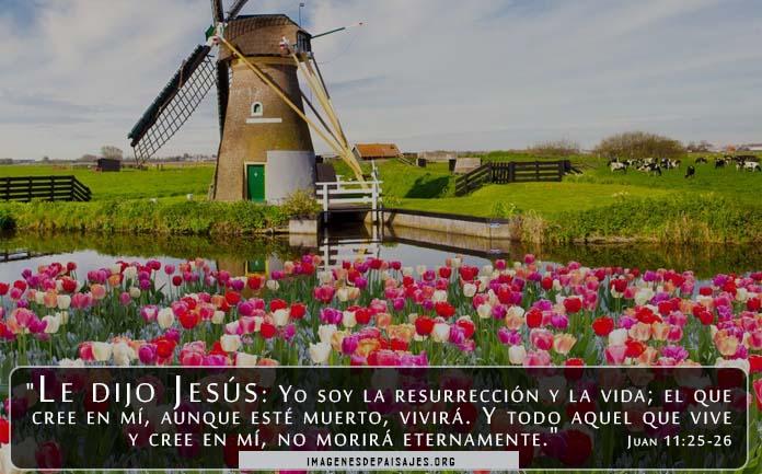 paisajes con versículos cristianos