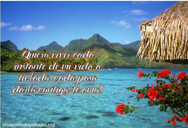 Frases De Amor Con Imagenes De Naturaleza: Preciosas Imágenes De Atardeceres Románticos Con Frases De