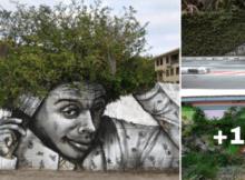 paisajes de arte urbano con plantas