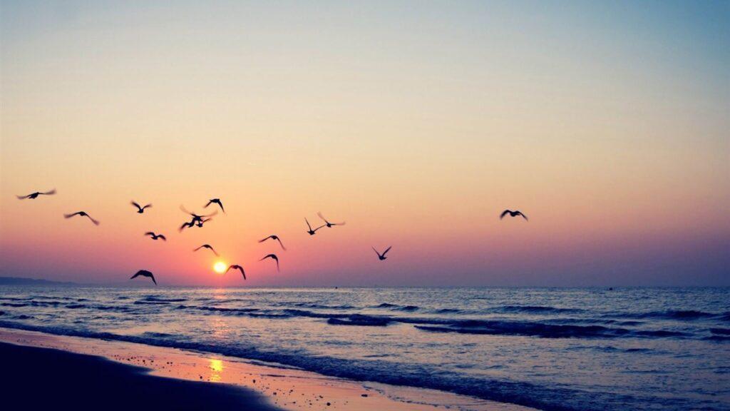 paisaje en la playa amanecer